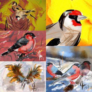 Bergvögel