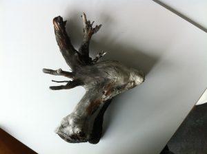 Naturkunst: Fund bei Eischoll (1975) Baumstumpf wie Rehkopf