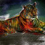 Tiger (2 von 5 vergeben)